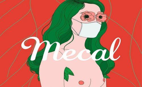 Mecal 2020