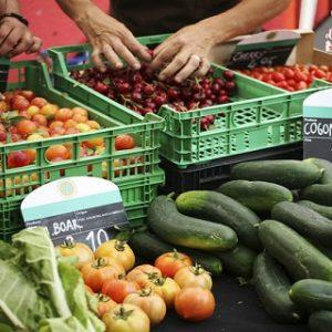Slow Food: Mercat de la Terra