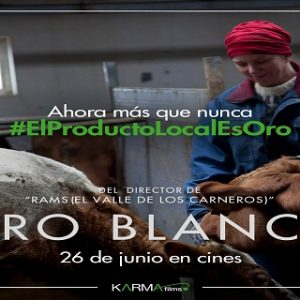 Producto Local