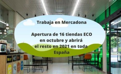 Mercadona ha decidido abrir en cada provincia de España susnuevas Tiendas 6.25